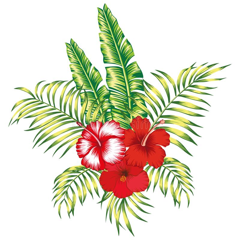 Предпосылка флористического тропического состава белая бесплатная иллюстрация