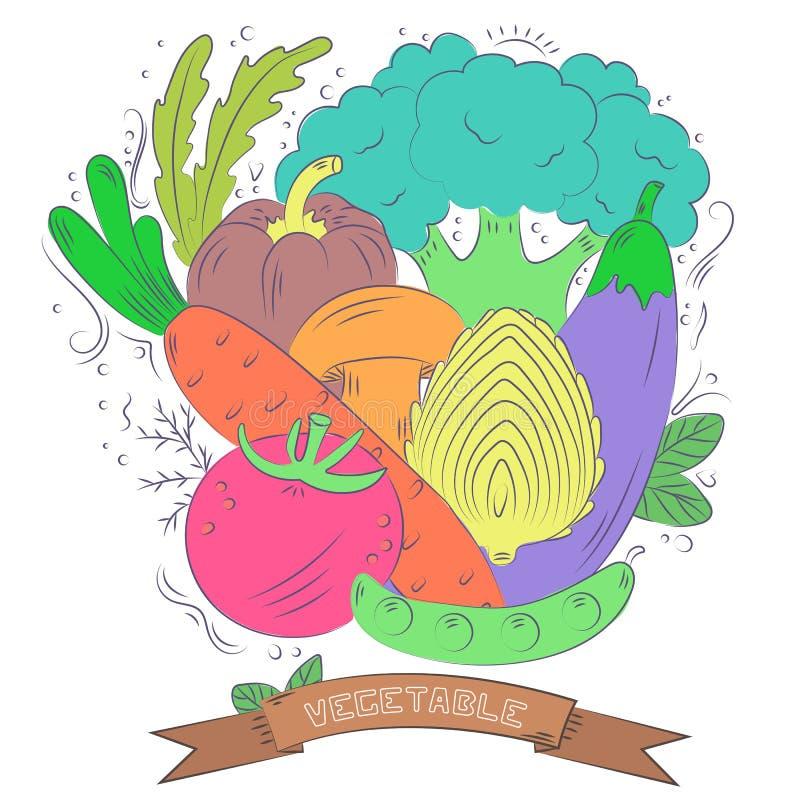 Предпосылка овощей руки вычерченная красочная Комплект вектора стиля эскиза иллюстрация штока