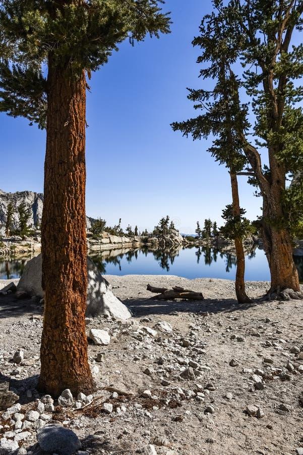 Причаливая уединенное озеро на солнечный летний день, восточные горы сосн Сьерра, Калифорния стоковые изображения rf
