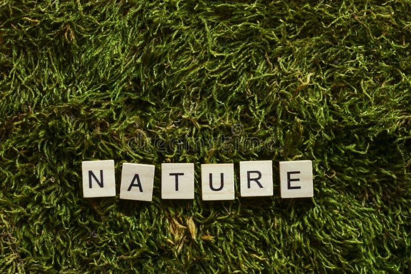 Природа написанная с деревянными письмами cubed форма на зеленой траве стоковое изображение rf