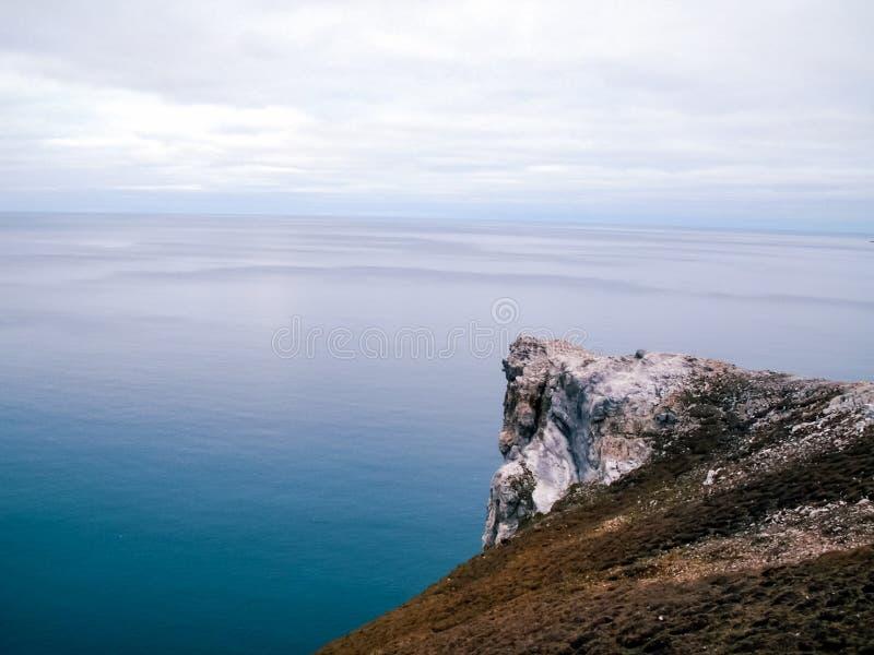 Природа острова Wrangel, ландшафт на острове Wrangel стоковое фото rf