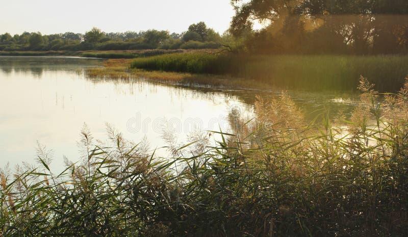 Пруд в Trebonsko, чехии во время захода солнца романтично Слепимость захода солнца рыбозавод стоковое изображение