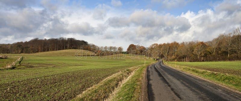 Проселочная дорога на лесе стоковые фотографии rf