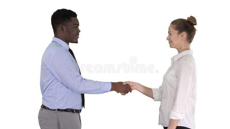 Профессиональные бизнесмены handshaking на белой предпосылке стоковые фото