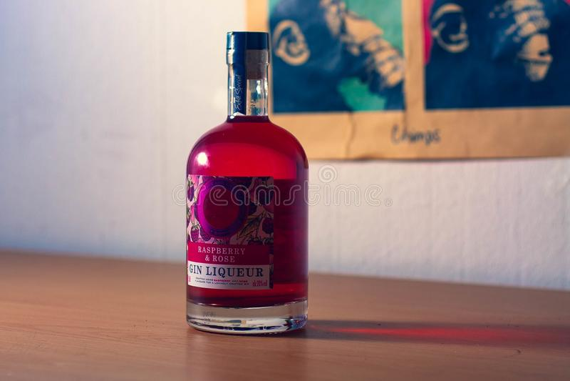 Получите ваше варенье лета дальше с этими поленикой & розовой бутылкой джина стоковое фото rf
