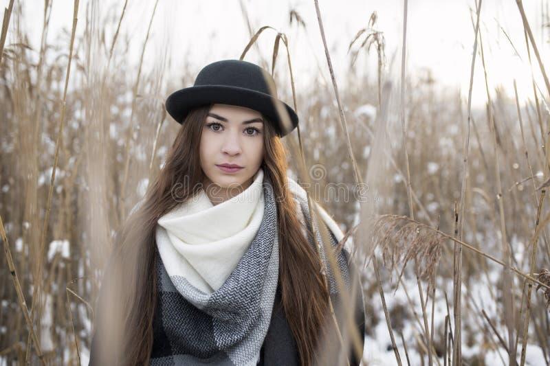Портрет брюнета красоты в пейзаже зимы луга Стильные шляпа и шарф Все крышка снегом стоковая фотография rf