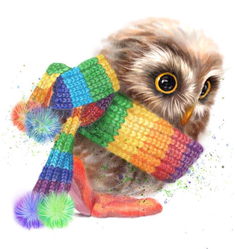 Оwl dans une écharpe rayée photos stock