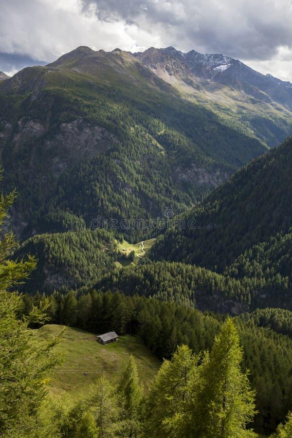 Ð•trayectoria wisting en montañas imágenes de archivo libres de regalías