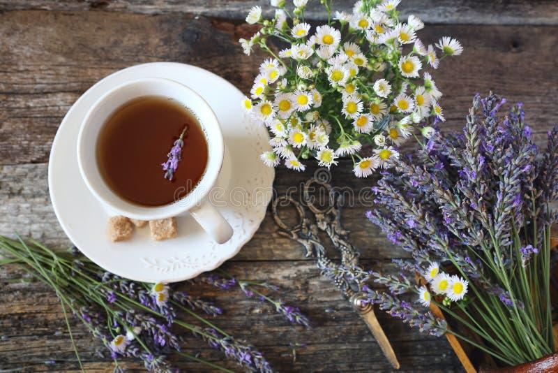 Ð  romatic淡紫色茶和野生春黄菊 库存照片