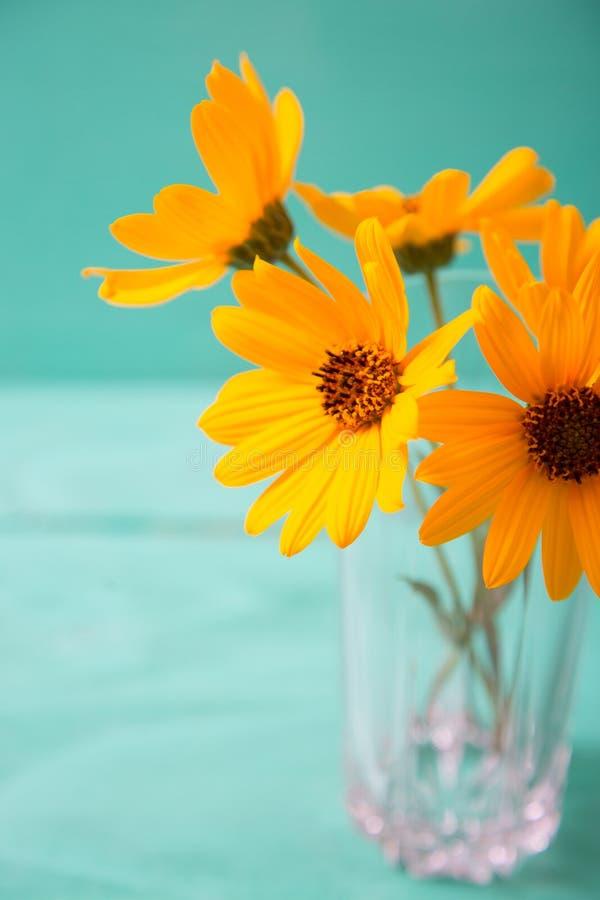 Ð 在玻璃花瓶的еliÐ ¾ Ñ€sis明亮的夏天黄色花在薄荷的绿色背景 图库摄影