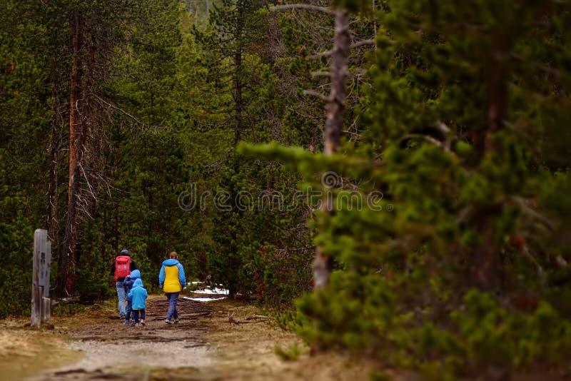 Ð ¡ χάνω-πλέκει τον οικογενειακό περίπατο στο ελβετικό εθνικό πάρκο στην άνοιξη Πεζοπορία με τα παιδάκια στοκ φωτογραφίες με δικαίωμα ελεύθερης χρήσης