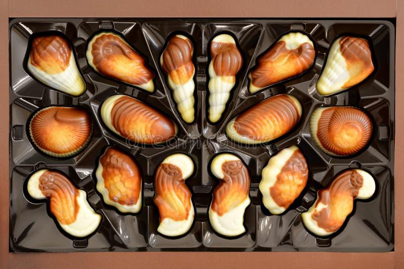 Ð-¡ ollection av chokladgodisar i en ask, hasselnötbränd mandel Choklader i form av havskal fotografering för bildbyråer