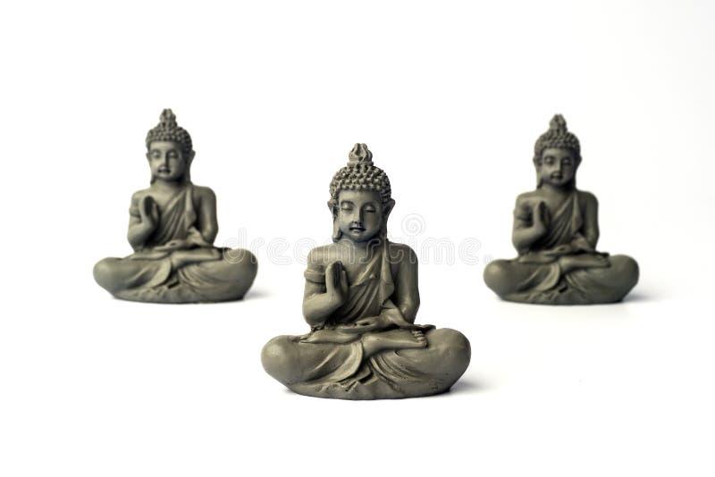 Ð-¡ oncentration av meningen Isolerat på vit Lotus poserar Zenmeditationbakgrund Koppla av det minsta begreppet royaltyfria foton
