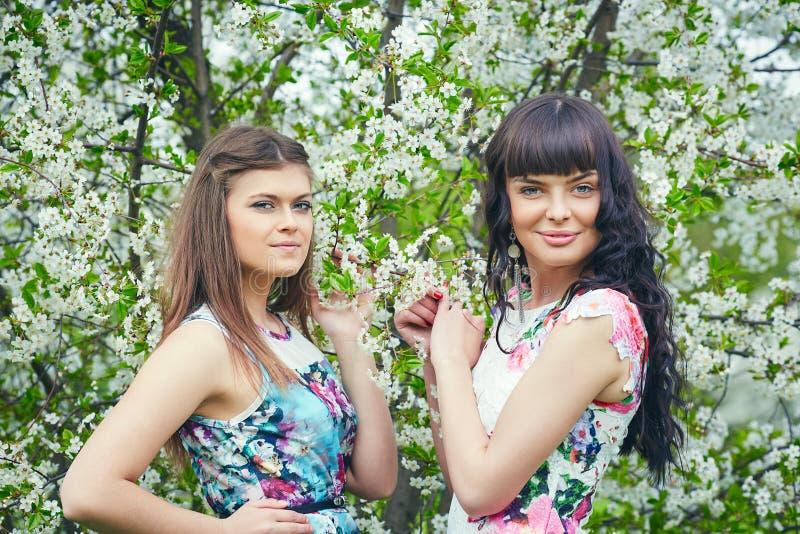 Ð-¡ ouple junge Schönheit, die Geruch des blühenden Baums an einem sonnigen Tag genießt stockfoto