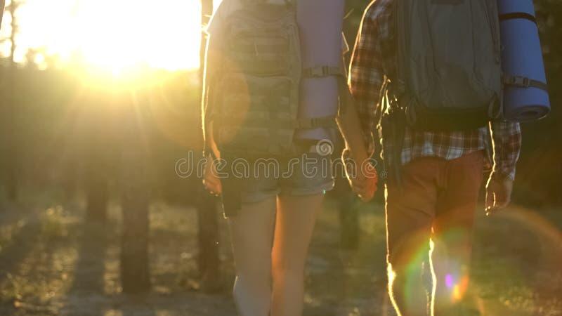 Девушка и парень держа руки и идя совместно в древесину, светлое будущее стоковые фото