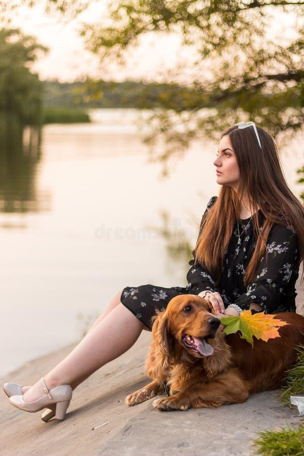 Девушка сидит снаружи в траве, любяще тряся руки с ее собакой, silhouetted против sunsetting неба стоковые изображения