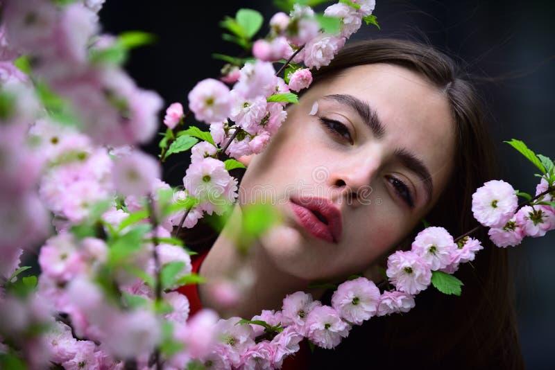 Девушка с цвести Сакурой на весенний день стоковое фото