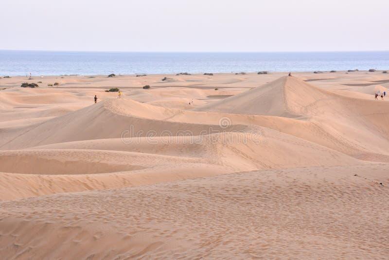 Дезертируйте с песчанными дюнами в Gran Canaria Испании стоковое фото
