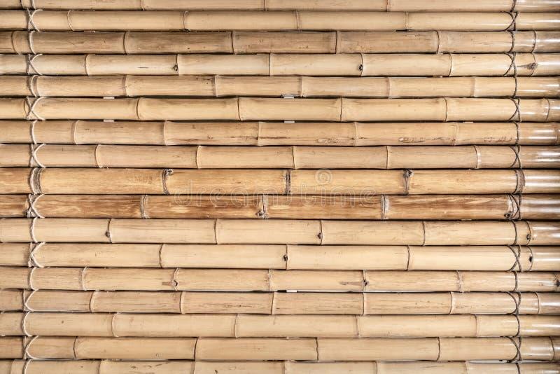 Деревянная бамбуковая картина загородки и безшовная предпосылка стоковое фото rf