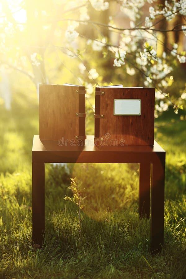2 деревянных книги фото на таблице в природе Место для надписи Взгляд со стороны стоковое изображение