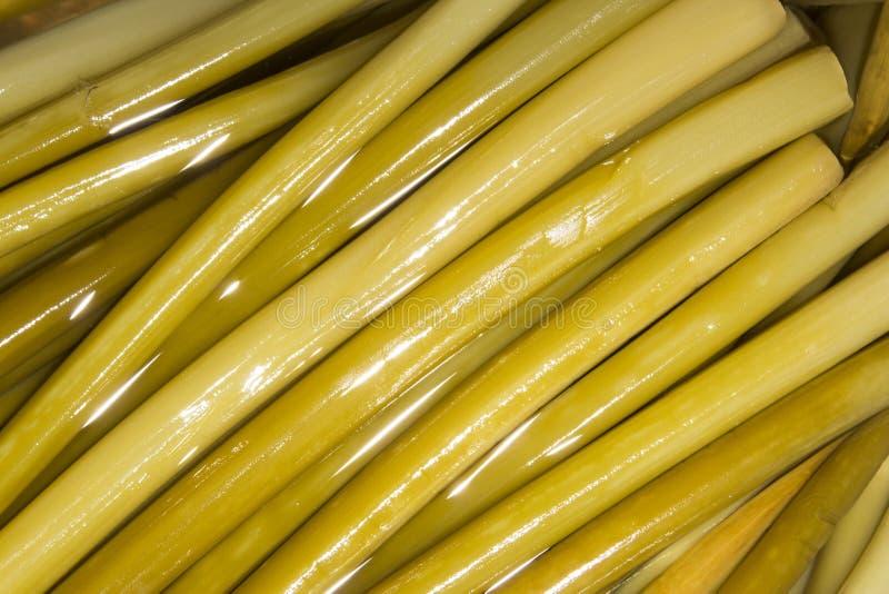 Дикий чеснок в маринаде Ramson стоковые фото