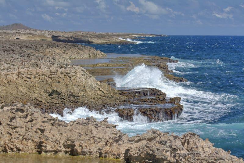 Дикое джакузи Curacao - Suplado стоковая фотография rf