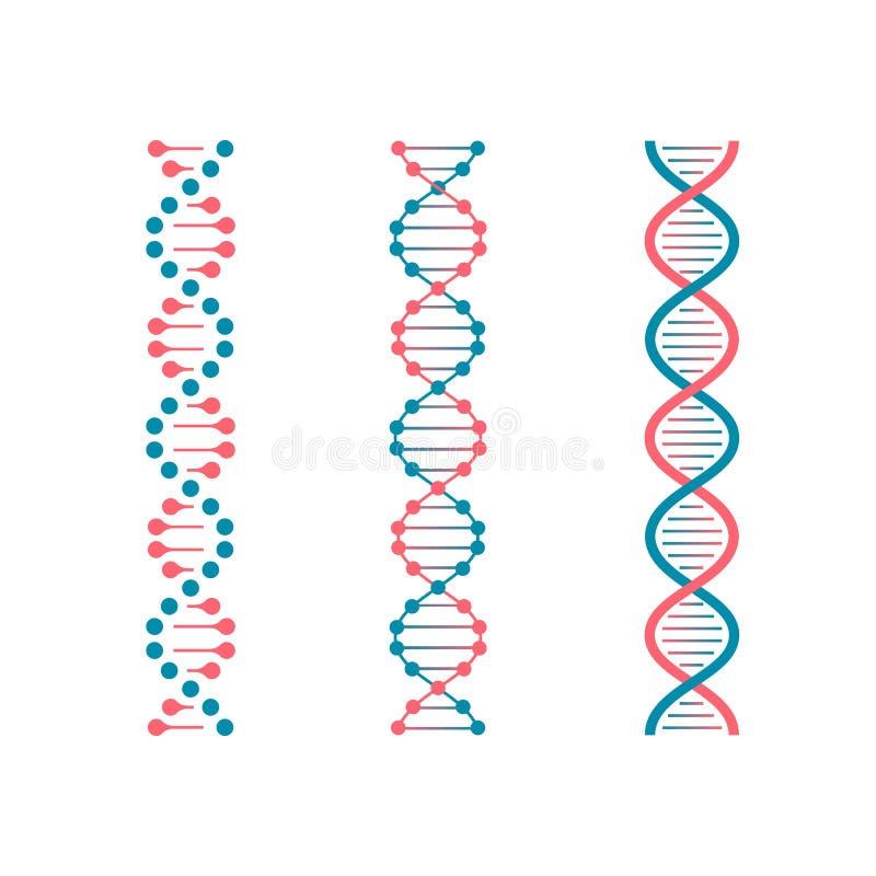 ДНК кода химии Двойной генетический код человеческой молекулы Вектор биотехнологии будущий иллюстрация штока