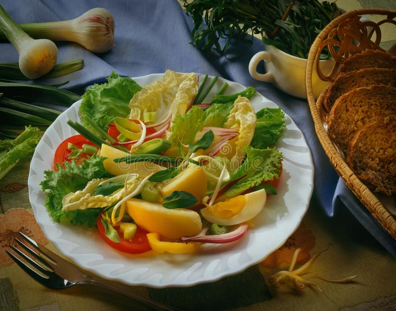 Ð 'Ð¸Ð Ð°Ñ ¡ ал· Салат овоща ¹ ‰ ÐΜÐ ¾ Ñ ² Ð ¾ Ð Ð стоковая фотография rf