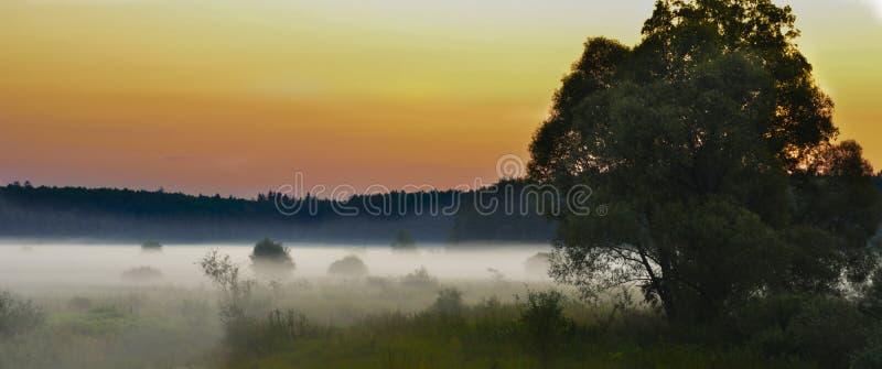 Ð'awn Bialowieza Forest Reserve Le village de Kamenyuki belarus photo stock