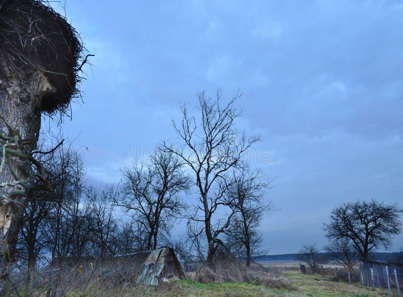 Ð'awn Bialowieza Forest Reserve Le village de Kamenyuki belarus image libre de droits