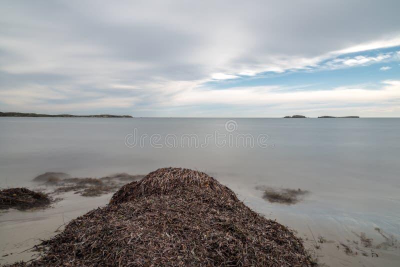 Долгая выдержка залива WA Австралии Shoalwater стоковое изображение rf