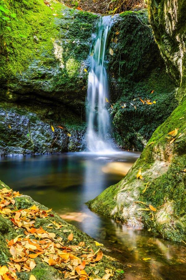 Долгая выдержка небольшого спрятанного водопада стоковое изображение