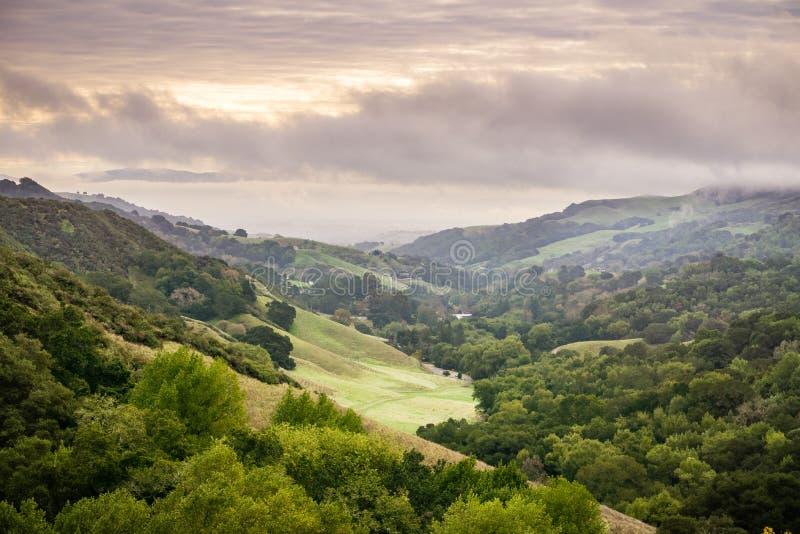 Долина в парке на пасмурный день, Contra Costa County глуши Las Trampas региональном, восточном San Francisco Bay, Калифорния стоковые фото