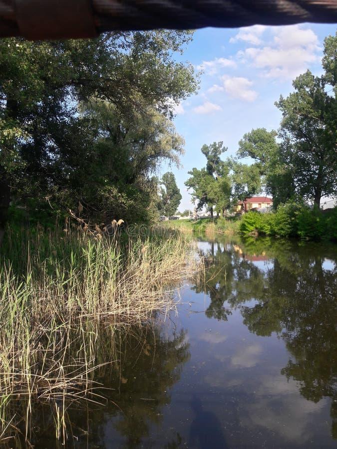 Дома на предпосылке реки, тростников и деревьев стоковые изображения