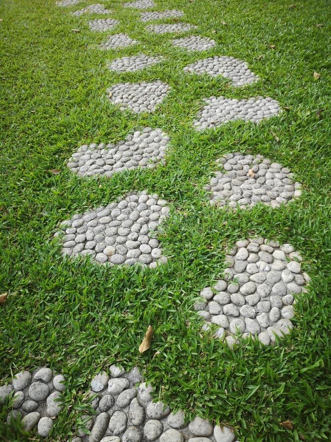 Дорожка в камешках Scree парка смешивает цемент помещенный на траве свободной от переходного люка a тропы тротуара мостовой матер стоковое изображение