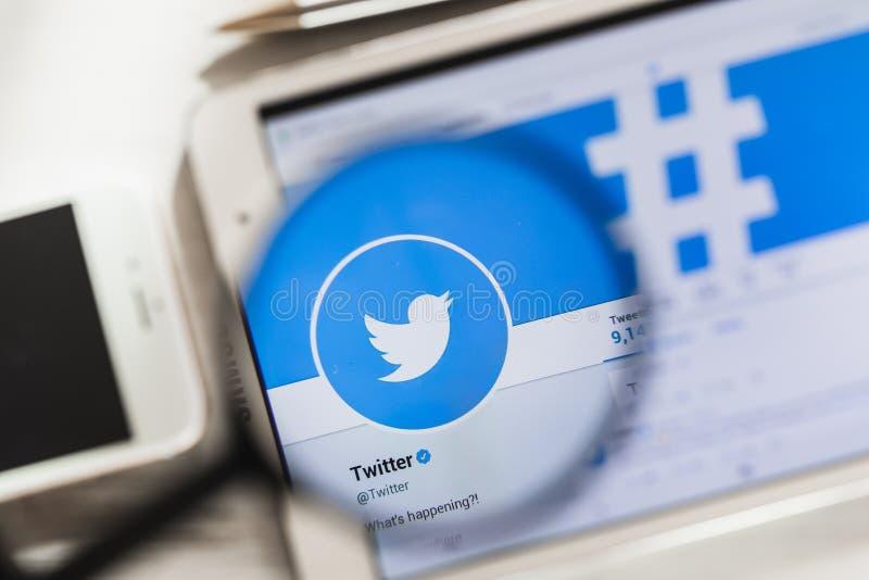 Сан-Франциско, Калифорния, США - 14-ое марта 2019: Twitter, домашняя страница вебсайта социальной сети официальная под лупой стоковая фотография