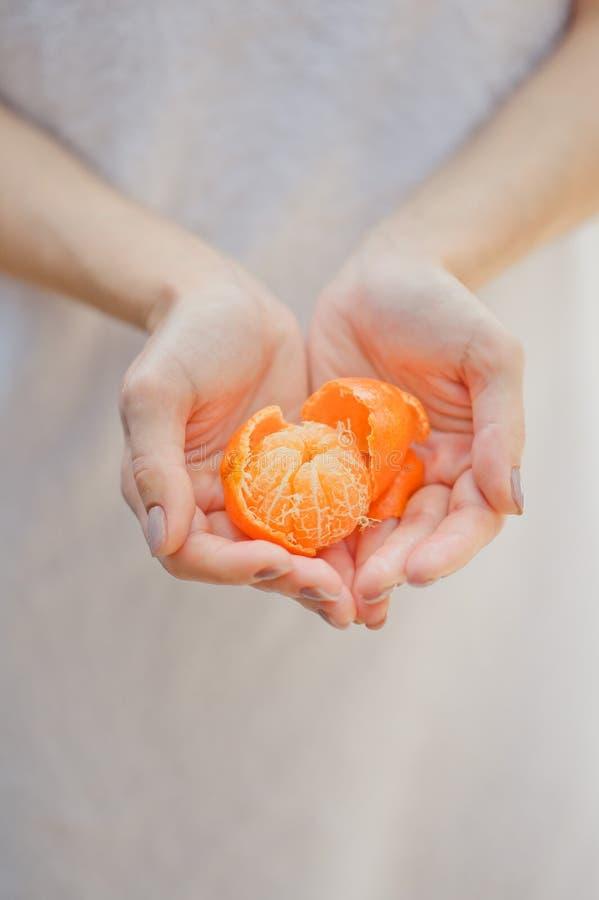 Свежие апельсины мандарина плодоовощ или tangerines Женские руки держа зрелые мандарины, конец вверх стоковая фотография