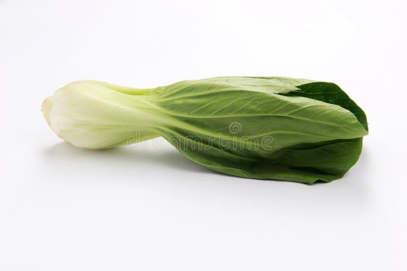 Свежие зеленые овощи мустарда стоковая фотография