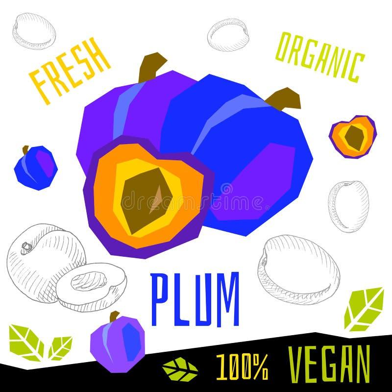 Свежие зрелые plumss куска plun приносят плоды иллюстрации органической руки вектора еды vegan вычерченные бесплатная иллюстрация