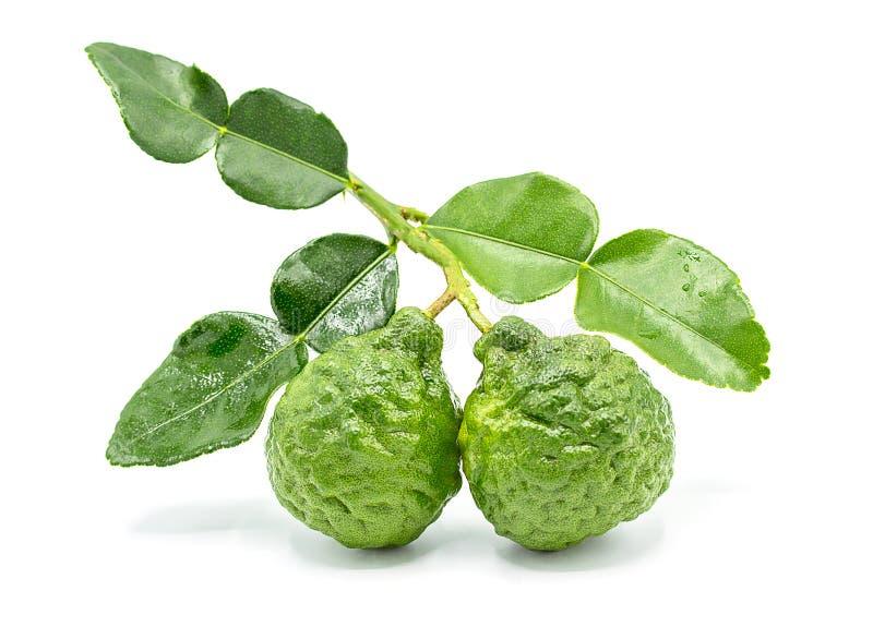 Свежий плодоовощ бергамота при лист изолированные на белой предпосылке стоковые фото