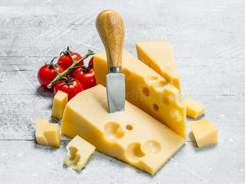 Свежий сыр и томаты стоковые изображения rf