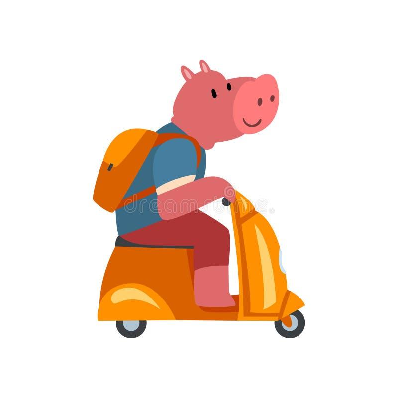 Свинья со скутером катания рюкзака, смешным животным характером используя иллюстрацию вектора корабля бесплатная иллюстрация