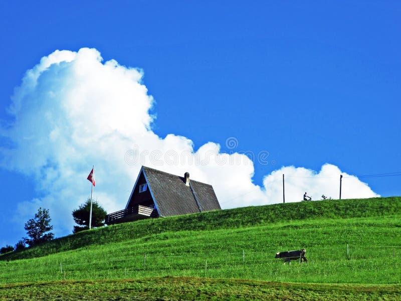Сельские традиционные фермы архитектуры и поголовья на наклонах Alviergruppe и в долину Рейна стоковое фото rf