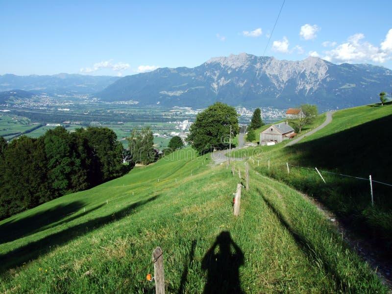 Сельские традиционные фермы архитектуры и поголовья на наклонах Alviergruppe и в долину Рейна стоковые фотографии rf