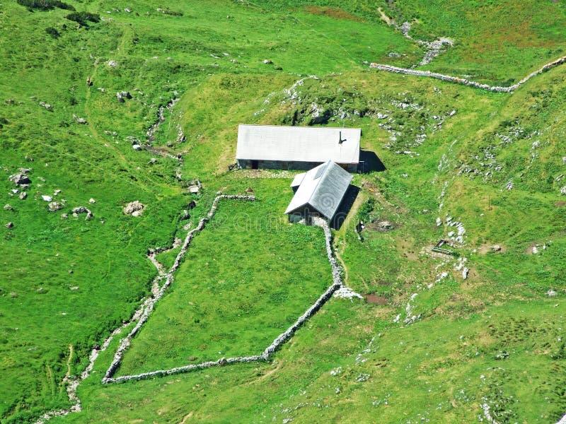 Сельские традиционные фермы архитектуры и поголовья на наклонах Alviergruppe и в долину Рейна стоковая фотография