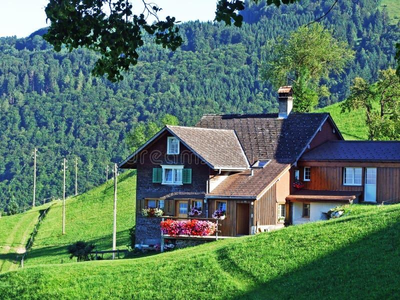Сельские традиционные фермы архитектуры и поголовья на наклонах Alviergruppe и в долину Рейна стоковое фото