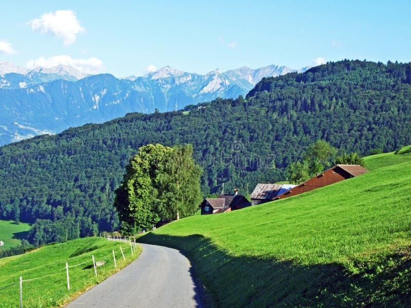 Сельские традиционные фермы архитектуры и поголовья на наклонах Alviergruppe и в долину Рейна стоковые изображения rf