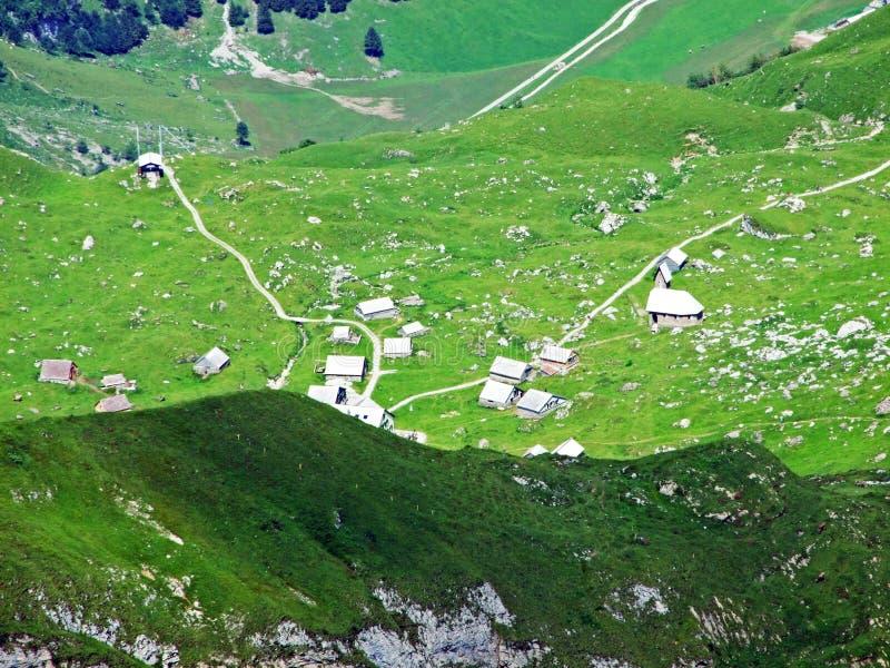 Сельские традиционные фермы архитектуры и поголовья на наклонах горной цепи Alpstein и в долину Thur реки стоковая фотография rf