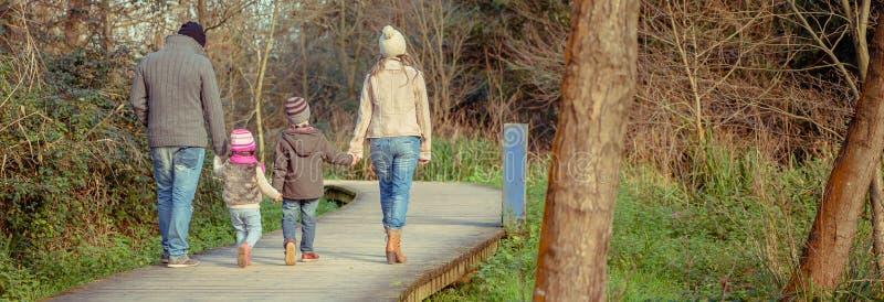 Семья идя совместно держащ руки в лесе стоковые фото