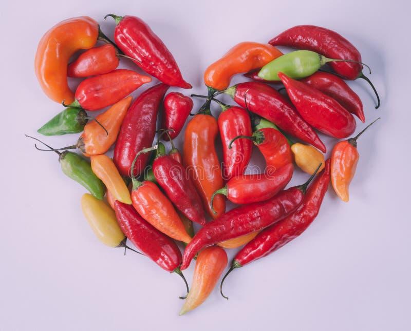 Сердце перцев красного chili на белой предпосылке стоковое изображение rf